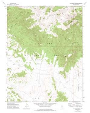 Saulsbury Basin topo map