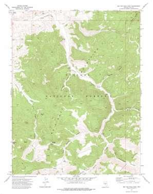 Big Ten Peak East topo map
