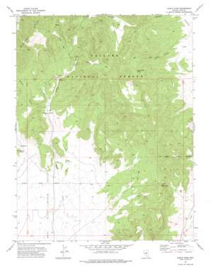 Eagle Pass topo map