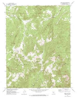 Morey Peak topo map