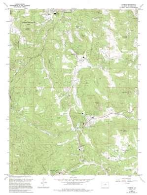 Conifer topo map