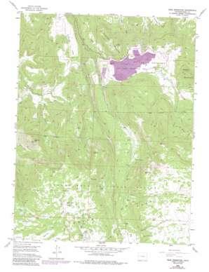 The Meadows topo map