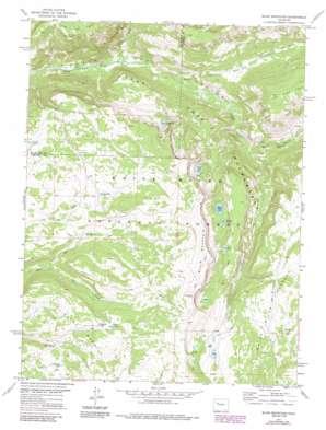 Blair Mountain USGS topographic map 39107g4