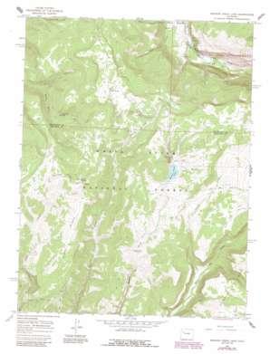 Meadow Creek Lake topo map