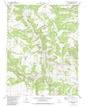 Mahogany Point topo map