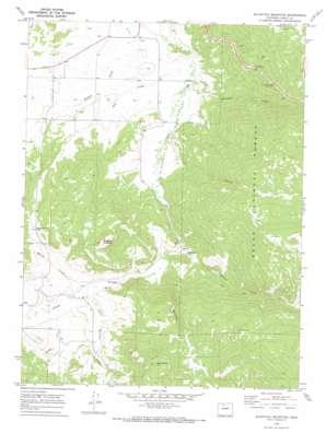 Blacktail Mountain topo map