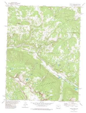 Ripple Creek topo map