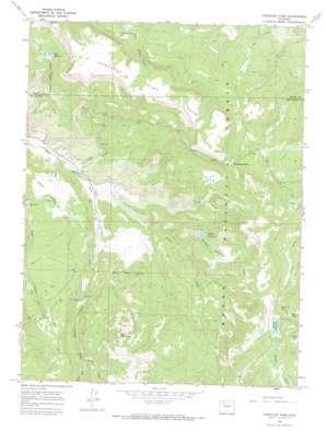 Dunckley Pass USGS topographic map 40107b2