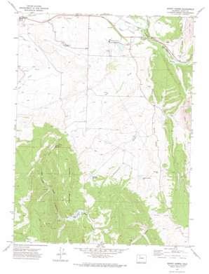Mount Harris USGS topographic map 40107d2