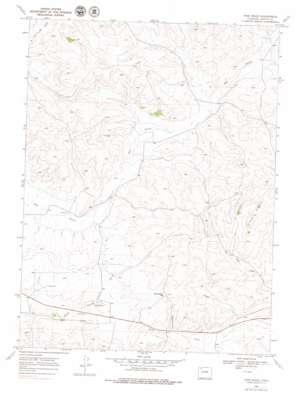 Pine Ridge topo map