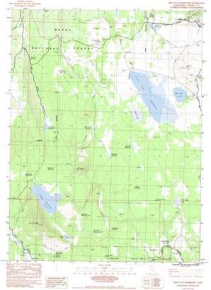Silva Flat Reservoir topo map