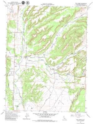 Palo Cedro topo map