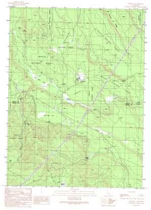 Pondosa topo map