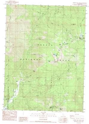 Whisky Bill Peak topo map