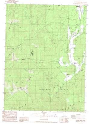 Girard Ridge topo map