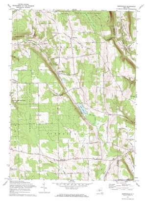 Sempronius USGS topographic map 42076f3