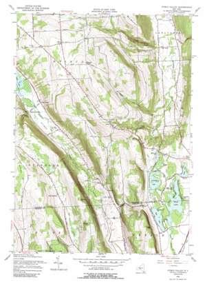 Otisco Valley topo map