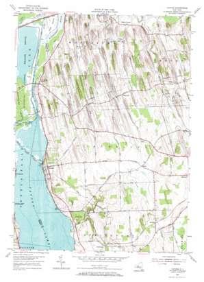 Cayuga topo map