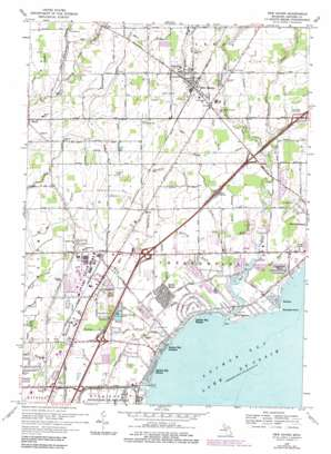 New Haven topo map