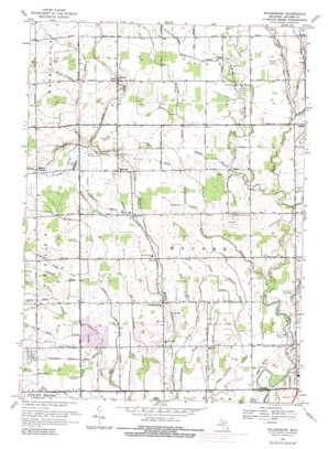 Waldenburg topo map