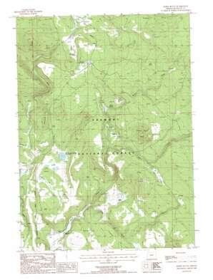 Williamson River USGS topographic map 42121e1