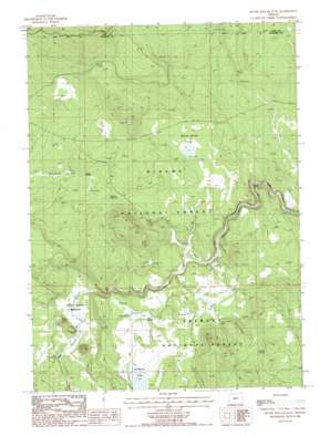 Silver Dollar Flat topo map
