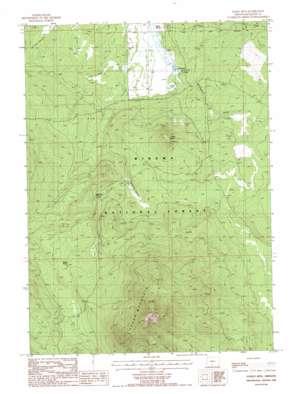 Fuego Mountain topo map