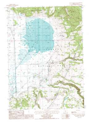 Sycan Marsh East topo map