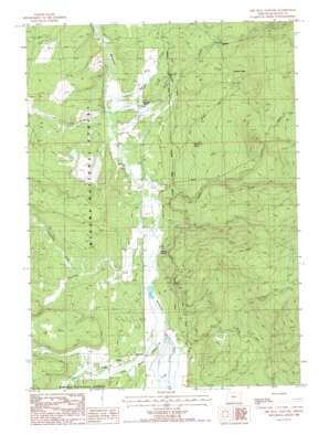 The Bull Pasture topo map