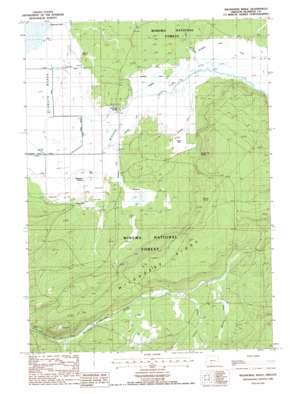 Wildhorse Ridge topo map