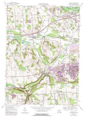 Camillus topo map