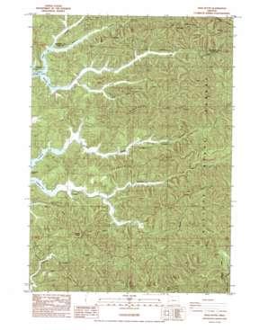 Reedsport USGS topographic map 43124e1