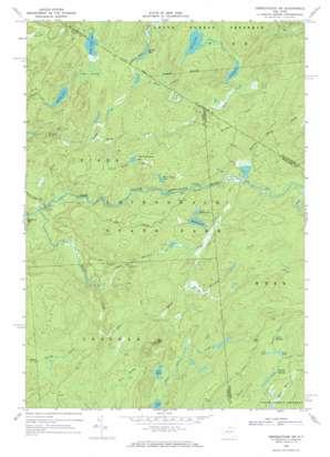 Oswegatchie Sw topo map