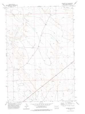 Schoepp Flat topo map