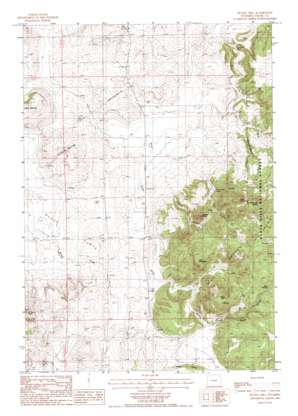 Duling Hill topo map