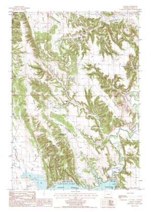 Carlile topo map