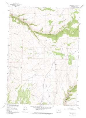 Bush Butte topo map