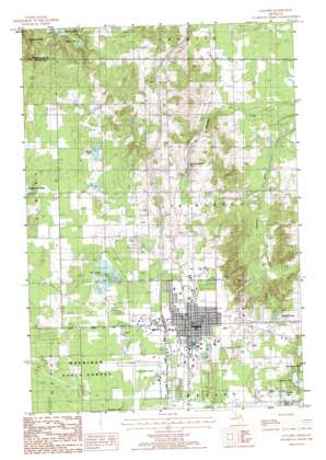 Gaylord Topographic Map MI