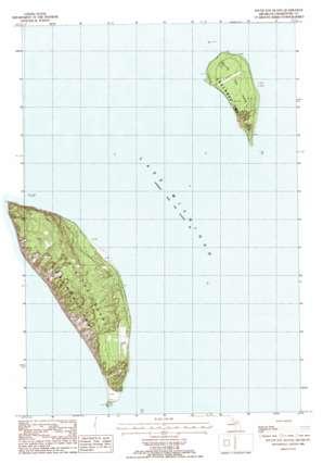 South Fox Island topo map