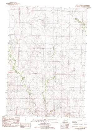 Irish Creek Se topo map