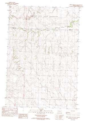 Irish Creek NE USGS topographic map 45101d5