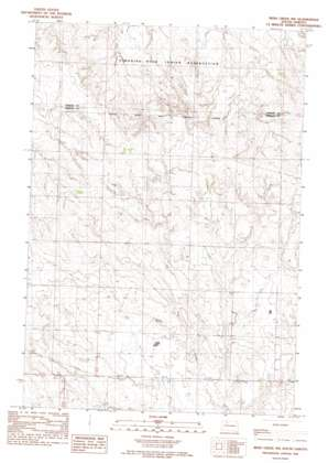 Irish Creek Nw topo map