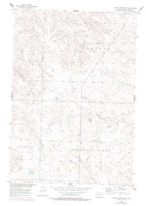Black Horse Sw USGS topographic map 45101e4