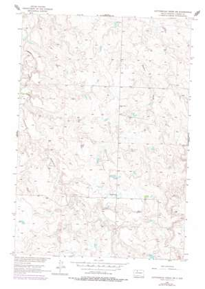 Cottonwood Creek Sw topo map