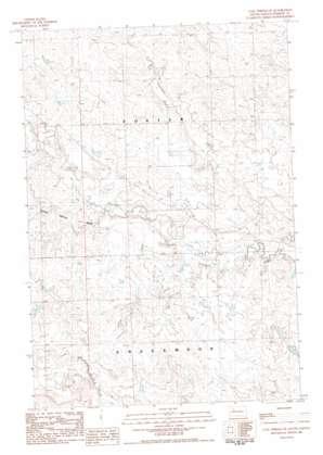 Coal Springs Se topo map