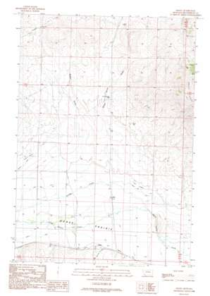 Salmon USGS topographic map 45113a1