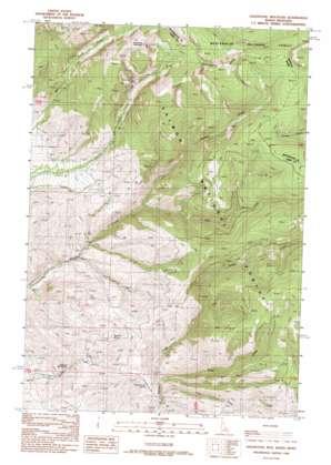Goldstone Mountain topo map
