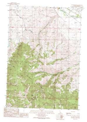 Sal Mountain topo map