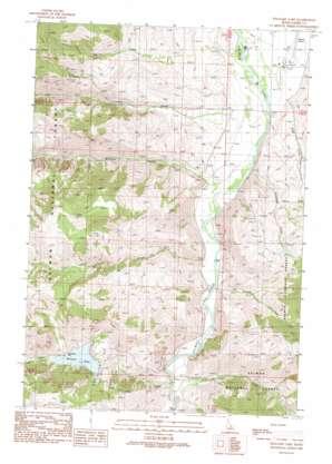 Williams Lake topo map