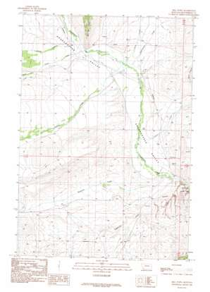 Mill Point topo map